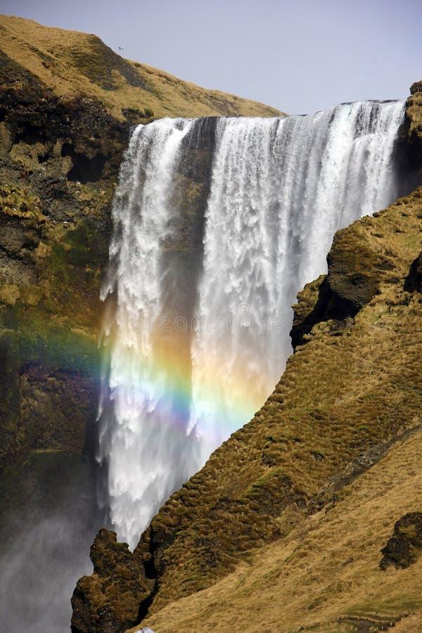 Regenbogen bij Skogafoss-waterval in IJsland royalty-vrije stock foto