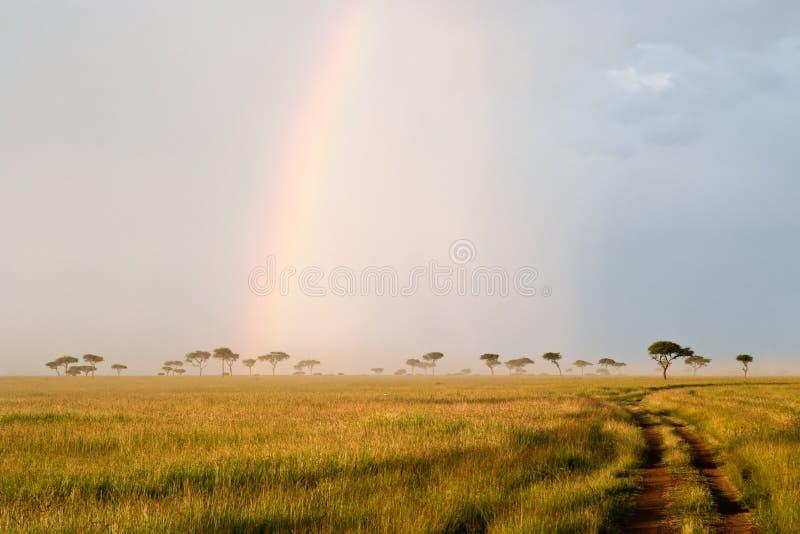 Regenbogen in der Savanne stockbild