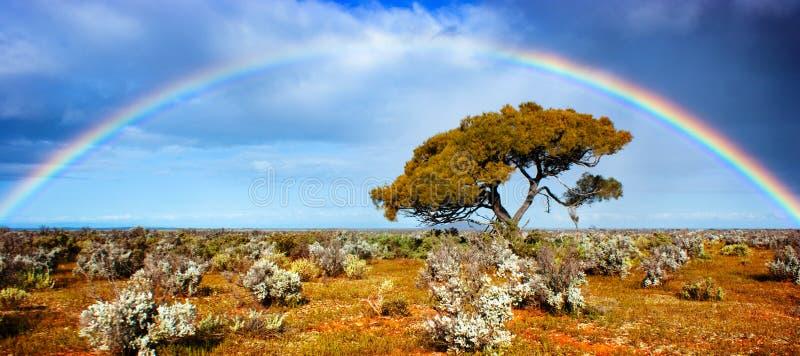 Regenbogen-Ruhm lizenzfreies stockfoto