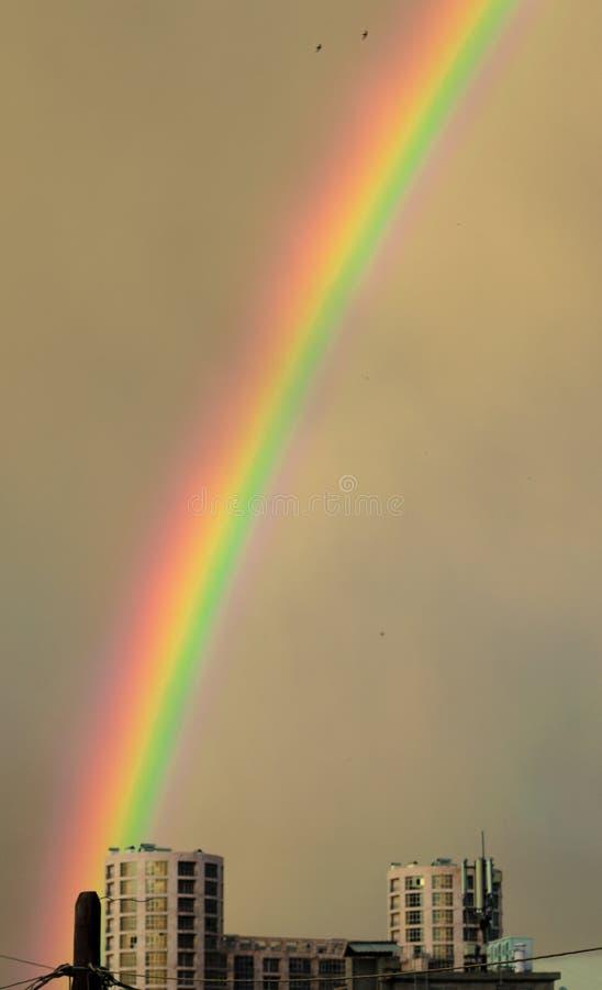 Regenbogen und ein Gebäude lizenzfreies stockbild