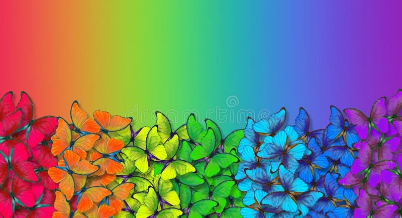Regenbogenspektrum Farben des Regenbogens Muster des mehrfarbigen Schmetterlinge morpho Beschaffenheitshintergrundes mehrfarbige  stockfotografie