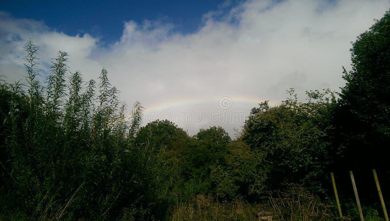 Regenboog in Castell Henllys royalty-vrije stock afbeelding