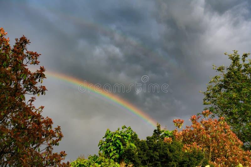 Regenboog en donkere regenwolken over bomen royalty-vrije stock afbeelding