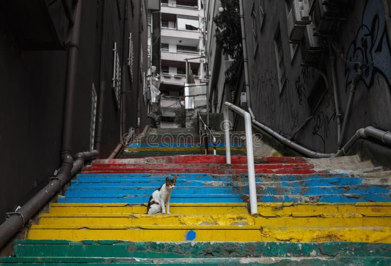 Regenboog gekleurde treden in stad royalty-vrije stock afbeelding