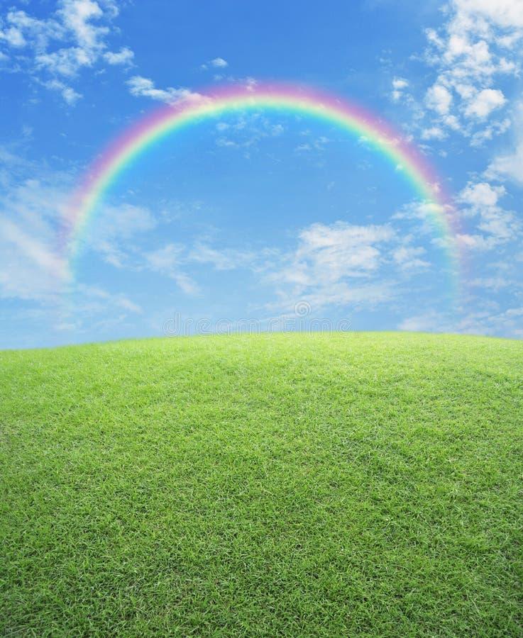 Regenboog met groen grasgebied over blauwe hemel stock foto's