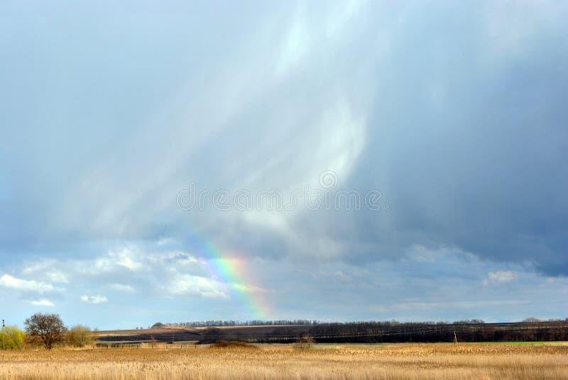 Regenboog op bewolkte hemel over gebied van geel gras en zwarte aarde, bomen volgens elektriciteitslijn, de lente stock afbeelding