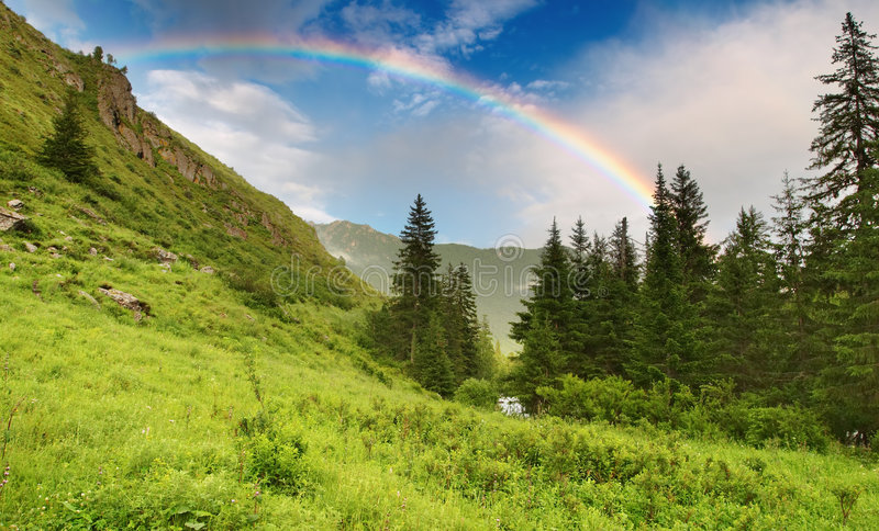 Regenboog over bos royalty-vrije stock afbeeldingen