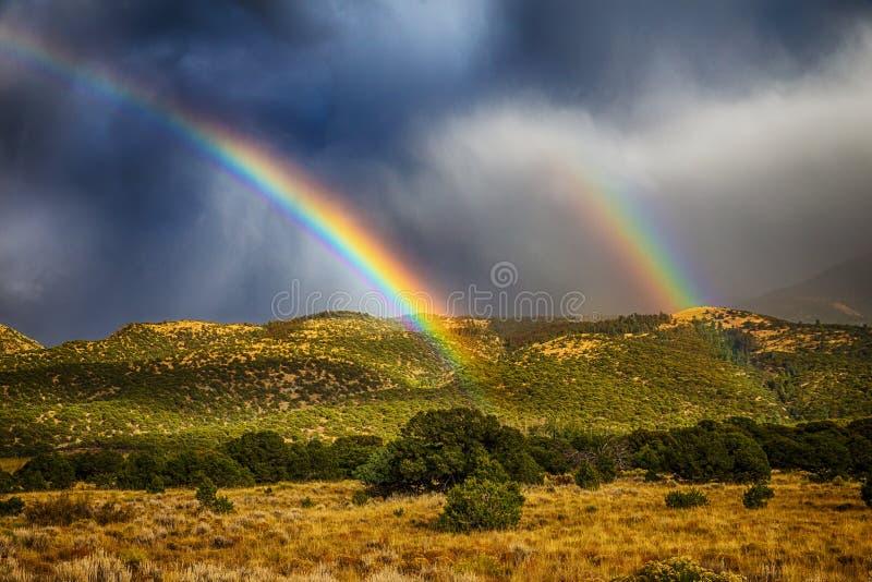 Regenboog over bos stock foto's