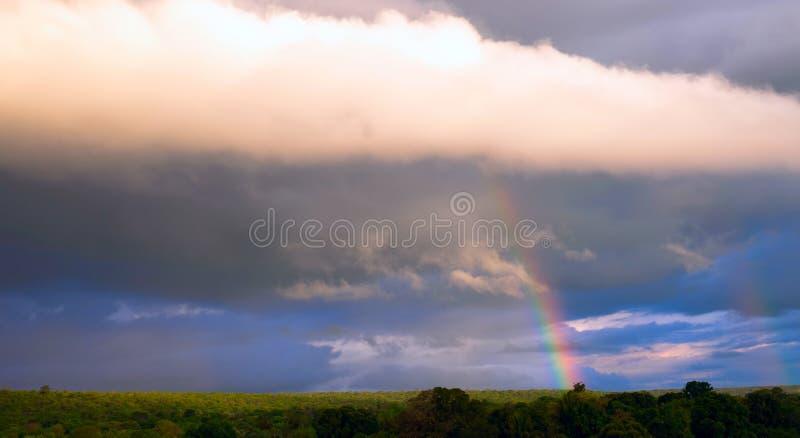 Regenboog over het regenwoud van een tropisch deel van Bolivië Dramatische wolken van het uitgaande onweer stock fotografie