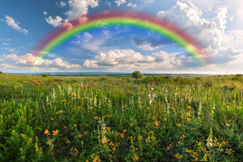 Regenboog over weide royalty-vrije stock fotografie