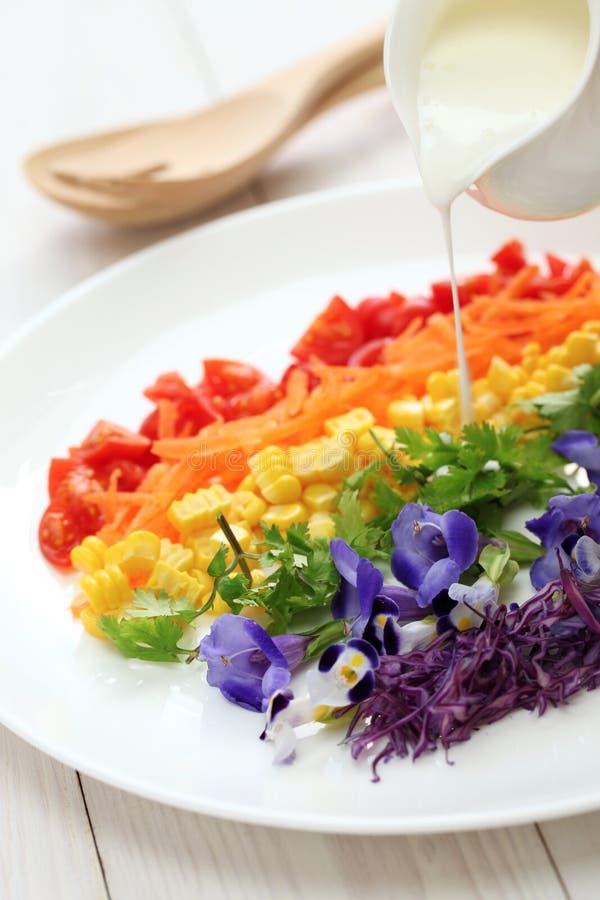 Regenboog super salade stock afbeelding