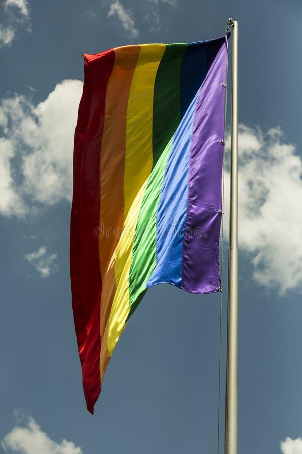 Regenboogvlag op de pool stock foto's