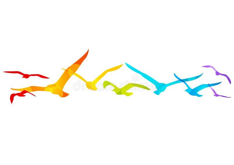 Regenboogvogels