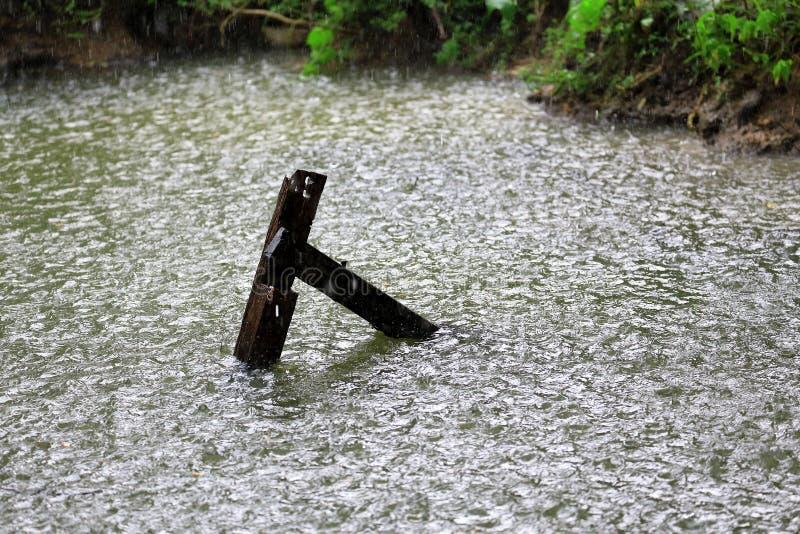 Regendaling in het water met uitstekende houten in kanaal, als aard stock foto's