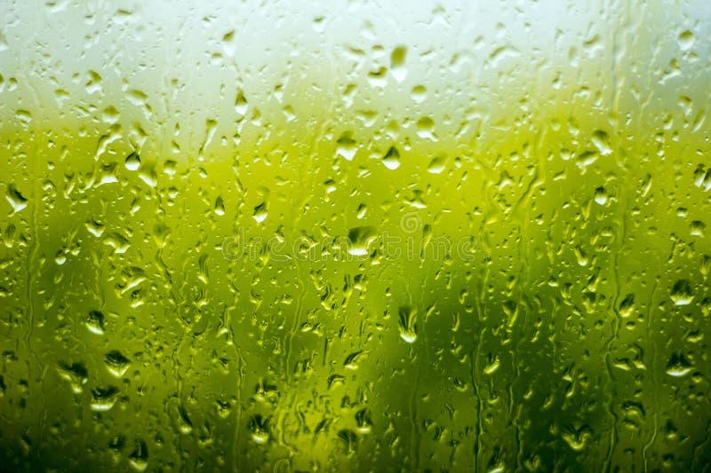 Regendalingen op het glas. stock foto's