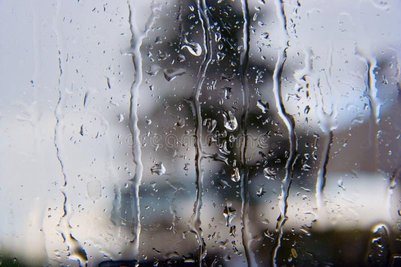 Regendruppels royalty-vrije stock foto