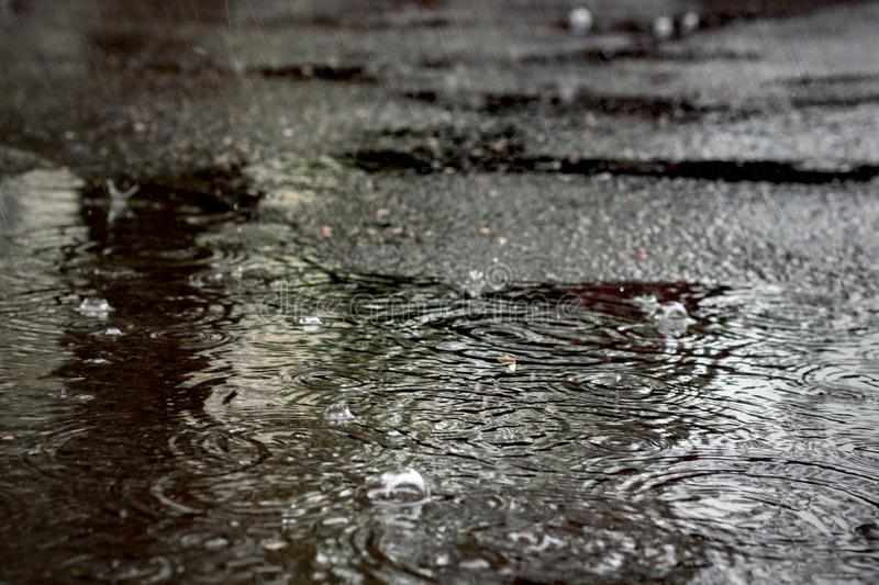 Regendruppels in een vulklei op het asfalt stock foto's