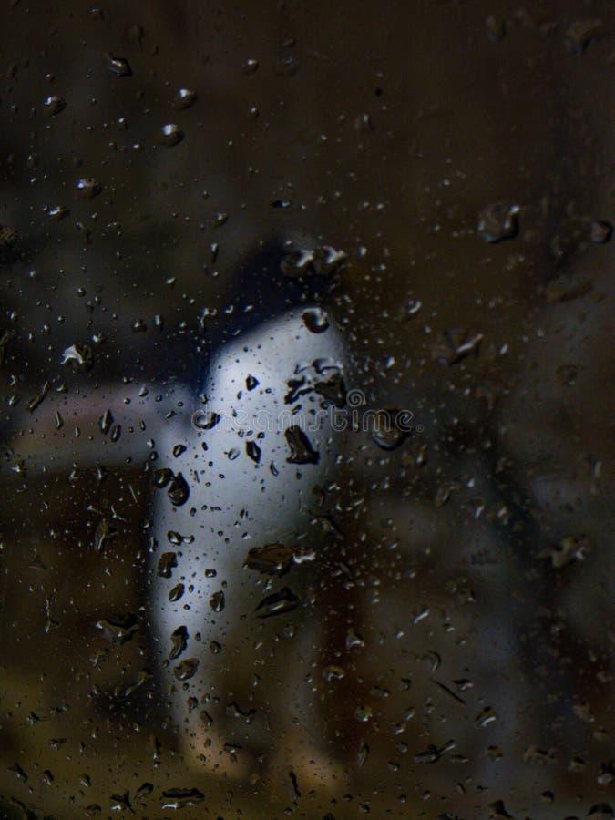 Regendruppels met pinguïn stock fotografie