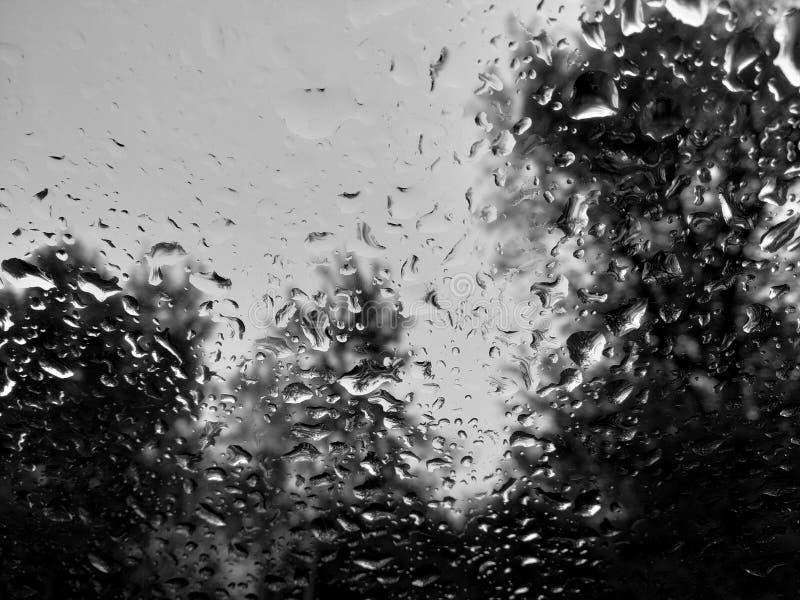 Regendruppels op het bewolkte glas stock afbeeldingen