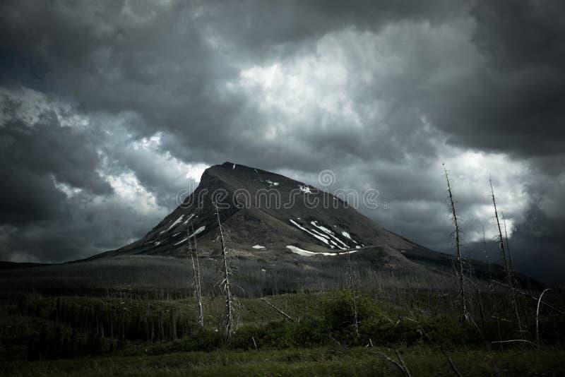 Regenende dag in Gletsjer nationaal park stock foto's