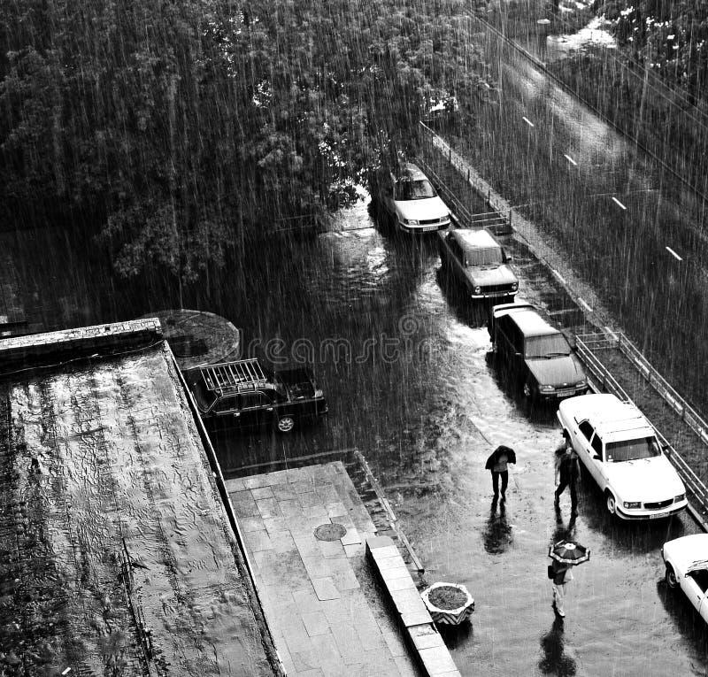 Regenguß stockbilder