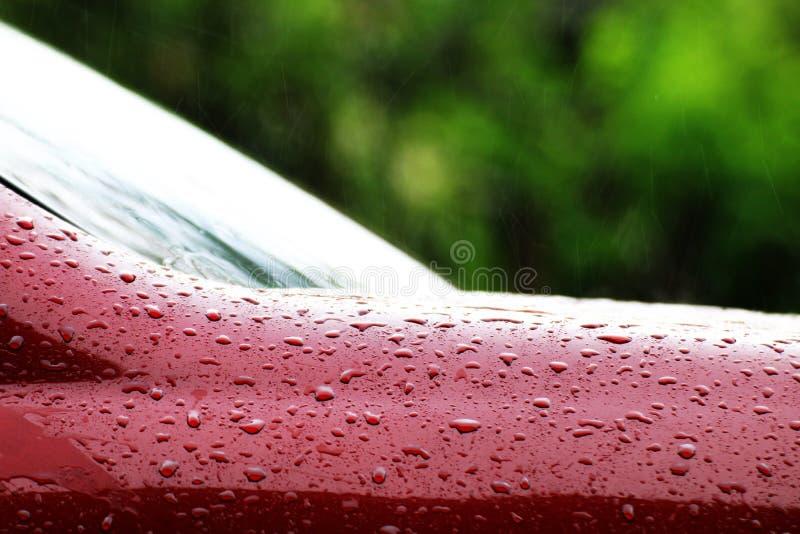 Regenrückgänge auf der roten Autooberfläche, Wassertröpfchen naß auf der Oberflächenhaube des roten Autos, Wasserregenrückgang na stockbilder