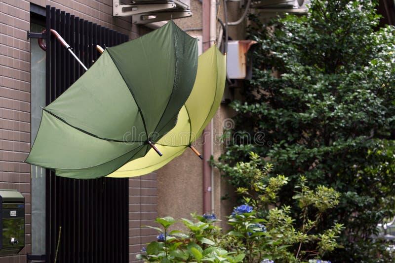 Regenschirme lizenzfreie stockfotos