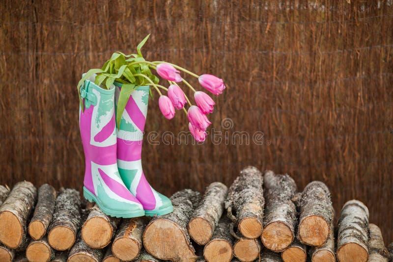 Regenstiefel mit frischen Tulpen stockbild