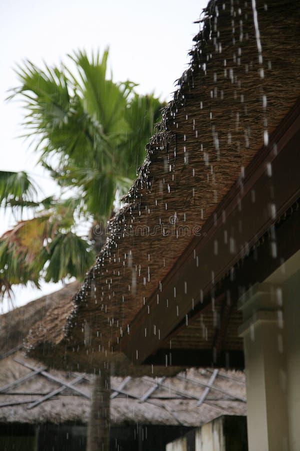 Regenstromen neer van een dak neer stock afbeelding