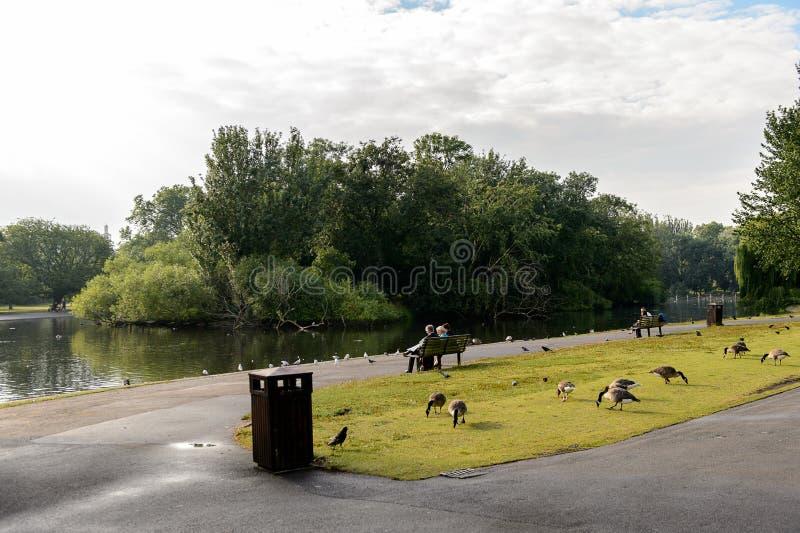 Regent's Park, uno de los parques reales de Londres imagen de archivo libre de regalías