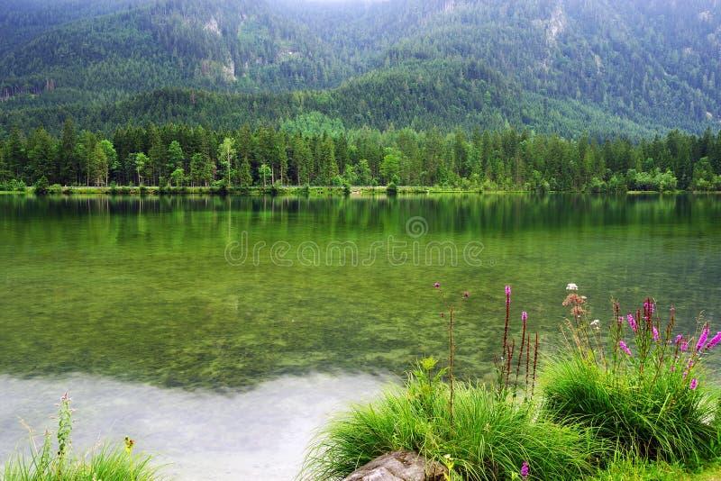 Regentag am Hintersee, Bayern, Deutschland lizenzfreie stockfotos