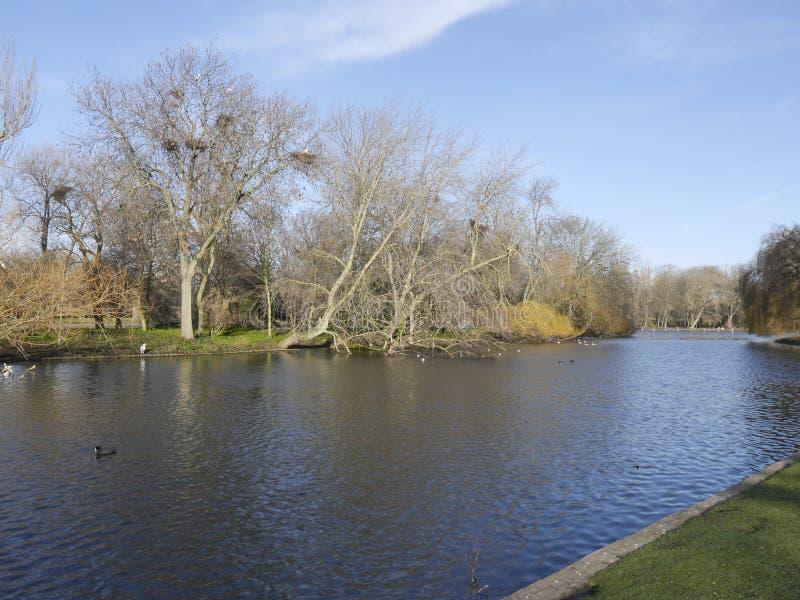 Regenter parkerar sjön fotografering för bildbyråer