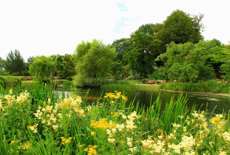 Regenter parkerar sjön London England arkivbilder