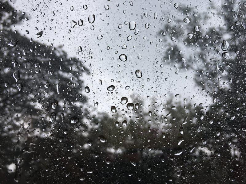 Regentropfen auf dem Glas stockbilder