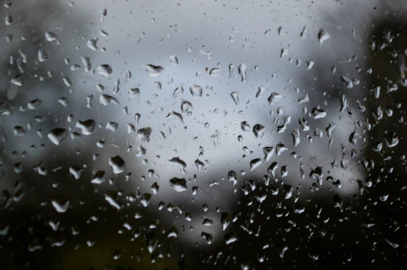Regentropfen auf Glas stockfotografie
