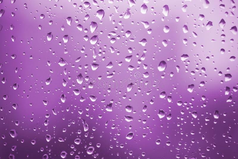 Regentropfen mit violetter Leuchte lizenzfreie stockbilder
