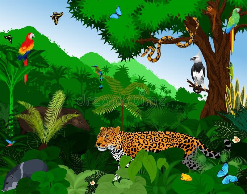 Regenwald mit Tiervektorillustration Vector grünen tropischen Walddschungel mit Papageien, Jaguar, Tapir, Harpyie, Mönch stock abbildung