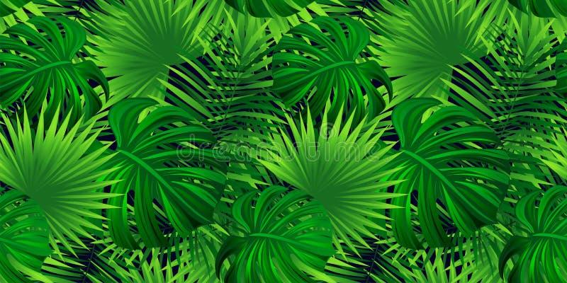 Regenwaldvektorhintergrund Tropische Blatt-Illustration tapezieren exotische Dschungelanlagen des Vektors, Palmen wiederholte Bes vektor abbildung