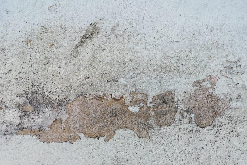 Regenwasser leckt auf der Decke, die Schaden verursacht und zieht Farbe und schimmelig ab stockfotos