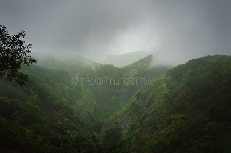 Regenwoud in een midden van India Mooi groen bos met regen Watervallen en verbazende mening van de weg stock fotografie