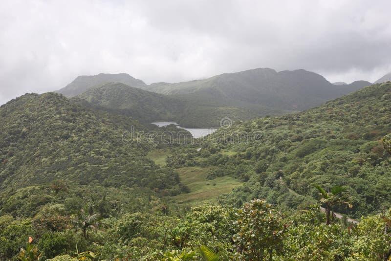 Regenwoud en bergen op Caraïbisch eiland royalty-vrije stock foto