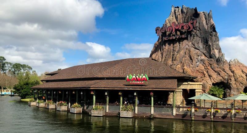Regenwoudkoffie, Disney-de Lentes, Orlando, Florida royalty-vrije stock afbeelding