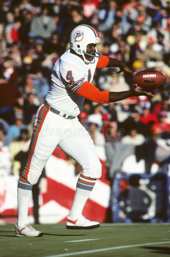 Reggie Roby. Miami Dolphins punter Reggie Robbie. (Image taken from color slide royalty free stock photography