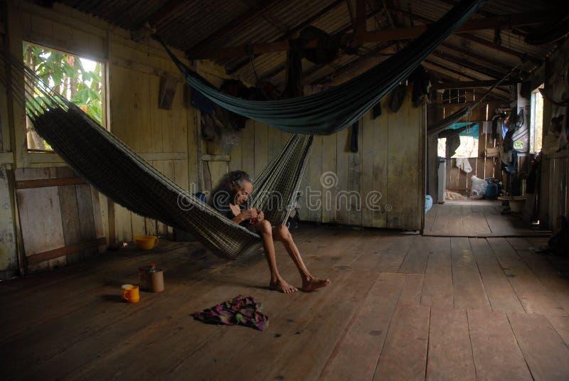 Região das Amazonas imagens de stock