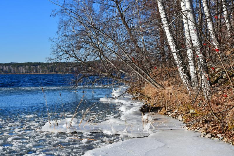 Região de Rússia, Chelyabinsk, monumento da natureza - lago Uvildy Seção pequena do gelo perto da costa no dia ensolarado de nove imagem de stock