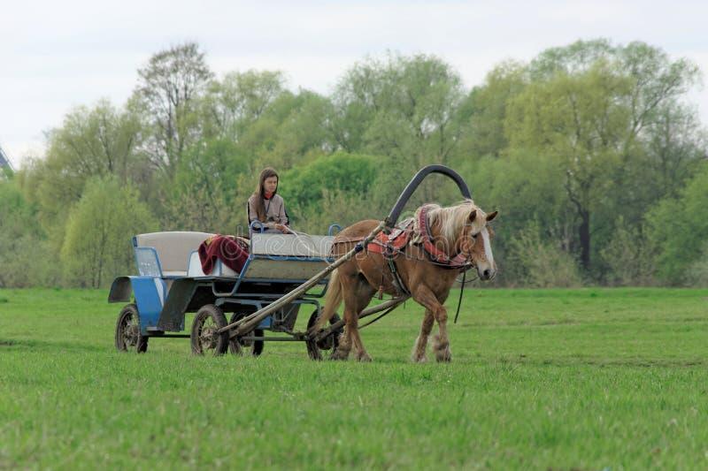 Região de Vladimir, Rússia - 6 de maio 2018 Carros do táxi a cavalo para o transporte dos peregrinos da estação à igreja foto de stock royalty free