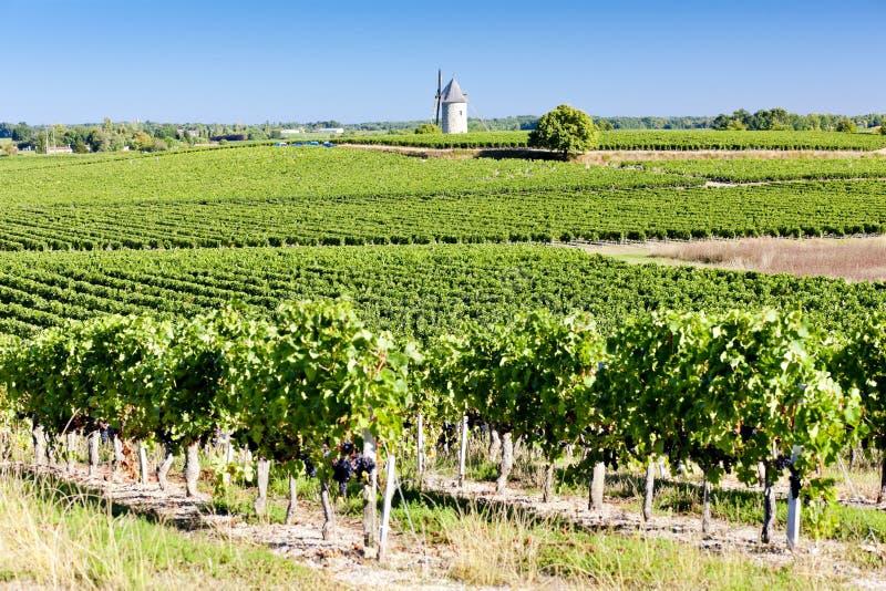 Região do Bordéus, France fotos de stock royalty free
