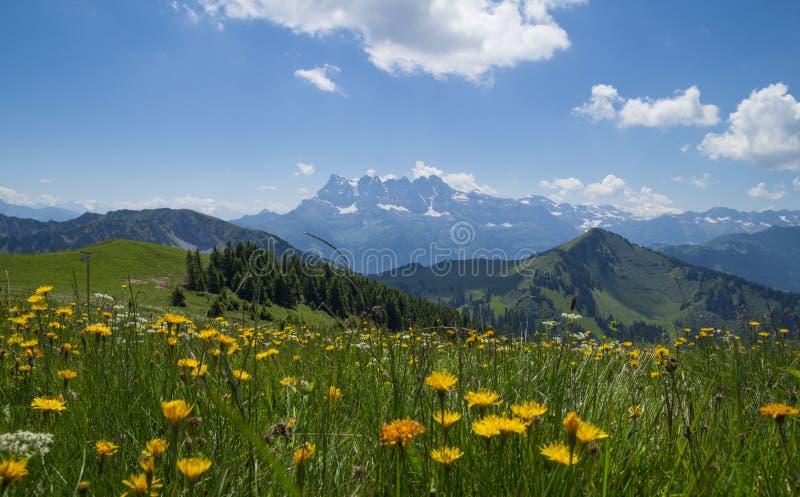 Região dos cumes franceses, Rhone - de Alpes imagem de stock