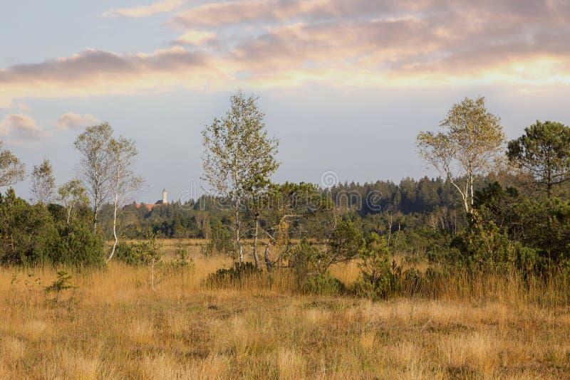 Região selvagem cênico nos pantanais, área da proteção de natureza foto de stock royalty free