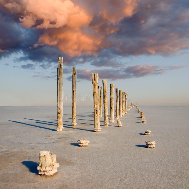Região selvagem de sal. fotos de stock royalty free